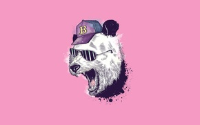 Picture humor, Minimalism, glasses, mouth, Panda, baseball cap, pink