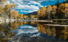 Picture autumn, forest, the sky, clouds, nature, river