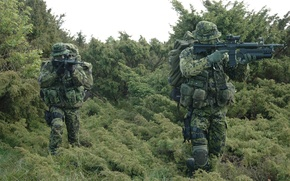 Picture forest, grass, weapons, soldiers, unit, Denmark, special