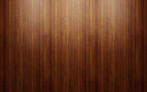 Picture narrow rail, glossy floor, dark wood