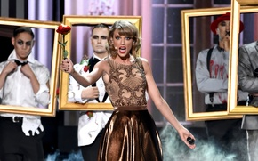 Picture speech, Taylor Swift, American Music Awards 2014