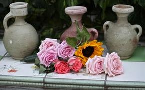 Picture roses, sunflower, pitchers, © Elena Di Guardo