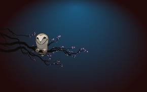Picture night, owl, branch
