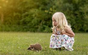Picture mood, girl, hedgehog