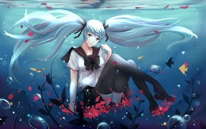 Wallpaper schoolgirl, hatsune miku, art, satorixxx, smile, under water, anime, fish, form, petals, girl, vocaloid
