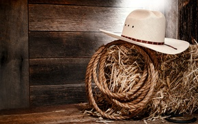 Picture wall, wood, cowboy, rope, white hat, straw