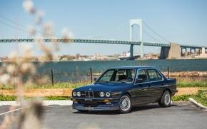 Picture BMW, bridge, Alpina, C2 2.5