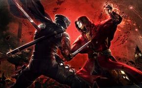 Picture sword, blood, phantom, battle, ninja, gaiden