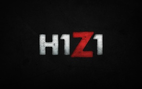 Picture game, games, h1z1