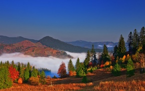 Picture autumn, the sky, trees, mountains, nature, fog, colors, Landscape, sky, trees, nature, autumn, mountain, fog, …