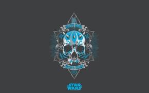 Picture background, skull, Star Wars, Darth Maul, Star Wars