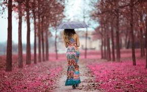 Picture girl, street, umbrella