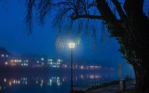 Picture night, lights, fog, river, tree, home, Germany, lantern, Ulm, Ulm
