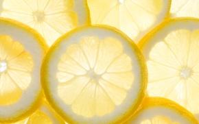 Picture lemon, food, slice, citrus