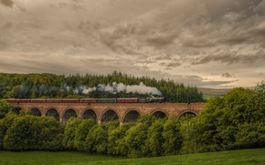 Picture forest, nature, England, train, the engine, railroad, Cornwood viaduc