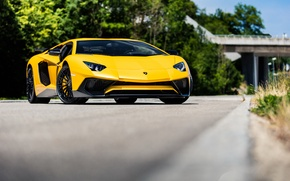 Picture Lamborghini, Yellow, Aventador, Superveloce, LP-750