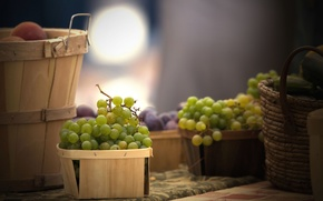 Picture basket, grapes, food