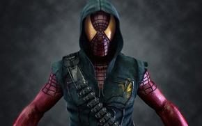 Wallpaper people, spider, mask, spider, hero, man