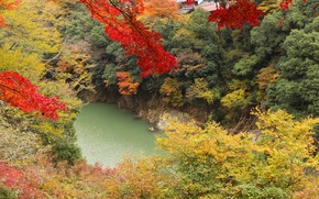 Picture autumn, leaves, trees, lake, slope