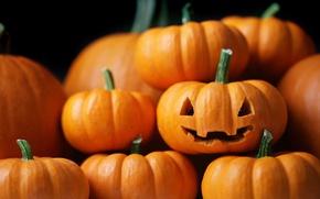 Wallpaper lantern, pumpkin, Halloween