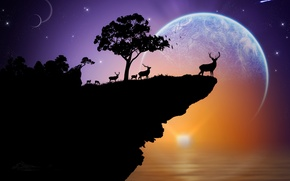 Picture sea, the sky, stars, sunset, rock, tree, planet, deer, silhouette
