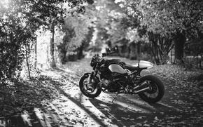 Picture road, autumn, leaves, the sun, trees, BMW, motorcycle