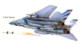 Picture the plane, attack, figure, fighter, USA, Tomcat, F-14