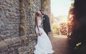 Picture kiss, dress, costume, lovers, the bride, the groom