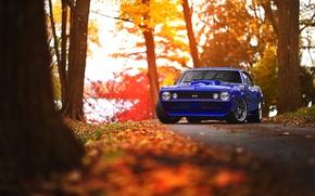 Wallpaper Chevrolet, Camaro, Blue, Black, Autumn, Wheels