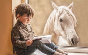 Picture horse, boy, window, book