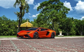 Picture Lamborghini, Orange, Front, Vorsteiner, Colored, Supercar, Exotic, Zaragoza, Aventador-V, LP740-4, Brightly