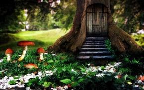 Picture house, tree, mushrooms, house, tree, mushrooms
