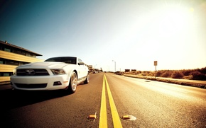 Wallpaper road, muscle car, 5.0, mustang, ford