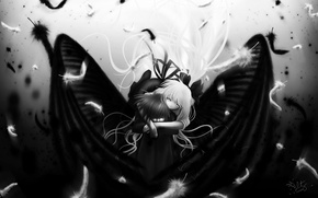 Picture white, black, wings