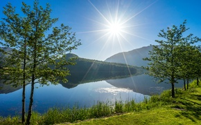 Picture trees, lake, Norway, Norway, Rogaland, Vigesaa