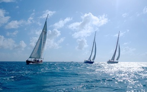 Picture sea, sport, yachts, regatta