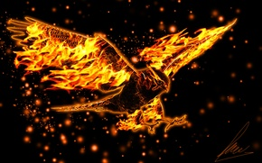 Picture eagle, wings, flight, burning