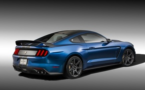 Picture Mustang, Ford, Shelby, Muscle, Car, Blue, Rear, 2015, GT350R