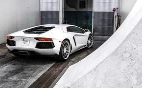 Picture white, the door, white, lamborghini, rear view, aventador, lp700-4, Lamborghini, aventador