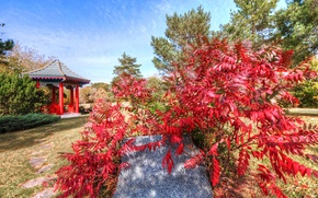 Picture autumn, the sky, leaves, clouds, stone, gazebo, tree, Japanese garden