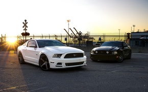 Picture white, sunset, black, mustang, Mustang, the fence, white, ford, black, Ford, sunset