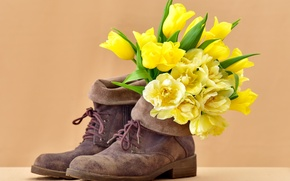 Wallpaper flowers, bouquet, tulips, shoes, tulips, boots