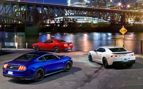 Picture Ford Mustang, Dodge Challenger, Chevrolet Camaro, musculary