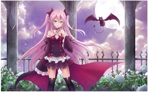 Picture night, roses, stockings, vampire, bat, the full moon, pink hair, Krul Tepes, Owari no Seraph, …