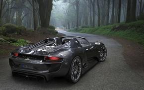 Picture road, forest, Porsche, car