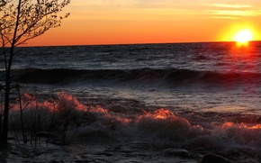 Picture sea, wave, the sky, the sun, sunset, squirt, stones, tree