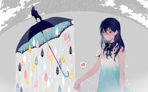 Picture girl, drops, rain, umbrella, anime, art, crow, ryuutsuki base review