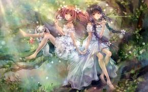 Picture forest, flowers, girls, art, animal, mahou shoujo madoka magica, homura akemi, madoka kaname, tandolcedeco, kyuubee