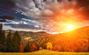 Picture autumn, forest, the sky, grass, the sun, clouds, trees, mountains, dawn, glade, yellow, fence