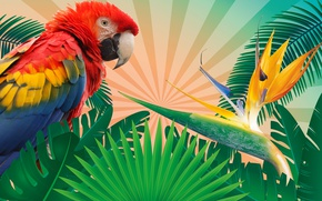 Wallpaper leaves, branches, tropics, rendering, background, bird, vector, feathers, parrot, colorful